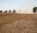 Россия побила свой рекорд экспорта зерна