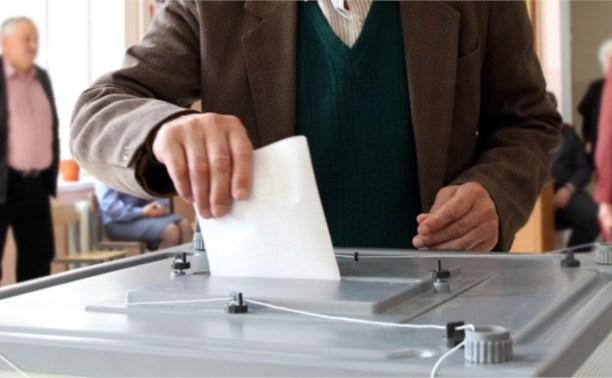 Бюллетени для голосования в Туле напечатают до 28 августа
