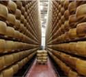 Пармезан и импортные йогурты могут вернуться на российские прилавки