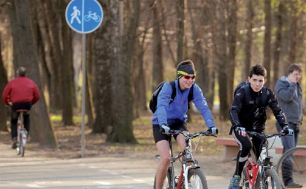 В Туле появятся новые велосипедные дорожки