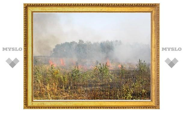 Новомосковск окутал дым