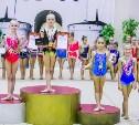 Щёкинские гимнастки вернулись с межрегионального турнира с медалями