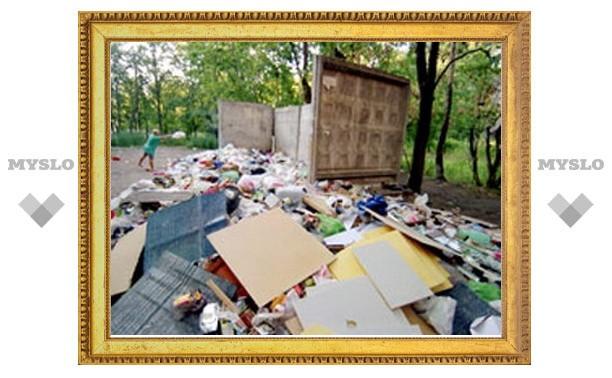 В Туле плохо убирают от мусора Советский район
