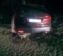 В Тульской области автомобиль Acura MDX врезался в дерево