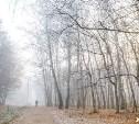 Новогодняя ночь в Тульской области будет морозной