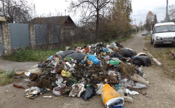 Глава администрации Тулы поручил разобраться со свалкой на ул. Бункерной