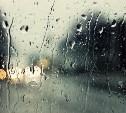 Погода в Туле 13 октября: ветрено и пасмурно