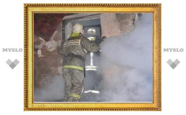 Пенсионерка из Тульской области погибла в пожаре
