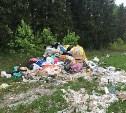 Прокуратура заставит Плавскую администрацию ликвидировать свалку