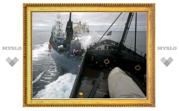 Радикальный эколог попытался захватить японскую китобойную шхуну