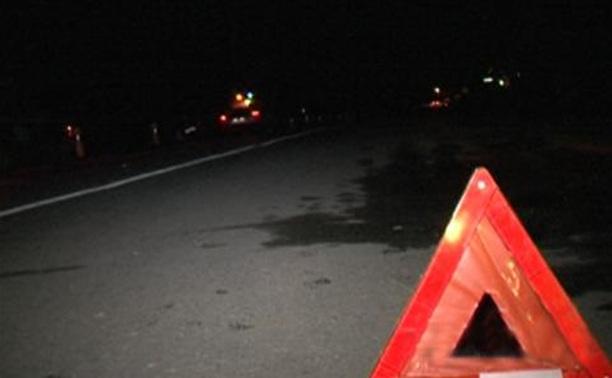 В Дубенском районе пьяный водитель сбил полицейского