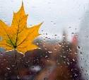 Погода в Туле 27 сентября: дождь, до +13 градусов, порывистый ветер