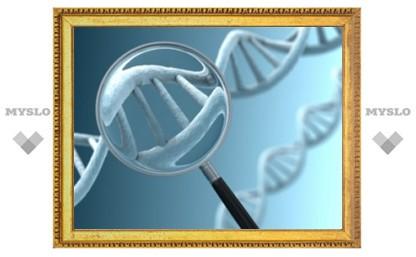 Британцев будут проверять на генетические болезни перед зачатием ребенка