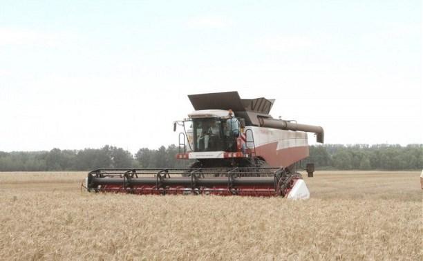 Тульские аграрии собрали первый миллион тонн зерна