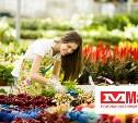 Встреча цветоводов-любителей в «Макси»