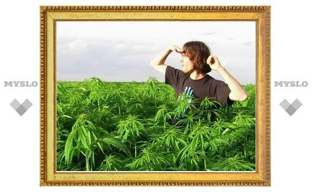 Глава госнаркоконтроля возмущен предложением о легализации «легких» наркотиков