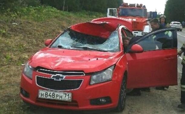 На Венёвском шоссе «Шевроле» сбил лося