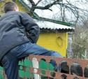 В Суворовском районе проголодавшийся мужчина ограбил дачу