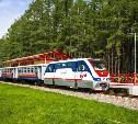 В Новомосковске пройдет торжественное закрытие юбилейного сезона детской железной дороги