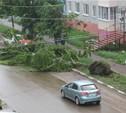 Ураган в Ефремовском районе