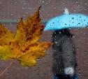 Выходные в Тульской области будут дождливыми и прохладными