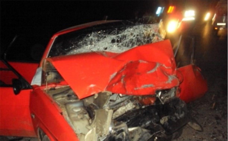В Ефремовском районе два человека погибли в ДТП