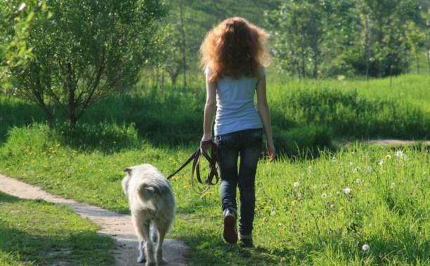 В Центральном районе откроют площадку для выгула собак