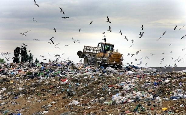 Строительство мусорного полигона на Новомосковском шоссе обсудят с туляками