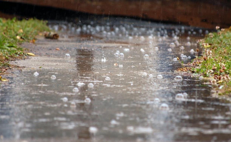 Погода в Туле 30 мая: гроза, дождь с градом и порывистый ветер