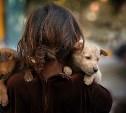 В Белоусовском парке пройдёт благотворительный фестиваль помощи животным