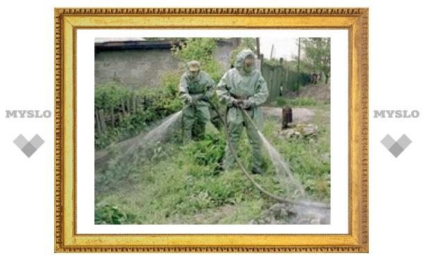 У жителей Астраханской области обнаружена сибирская язва