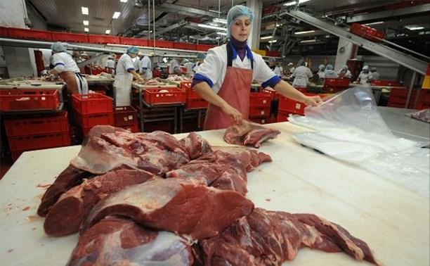 Санкционное мясо будут перерабатывать в корм для животных в Тульской области