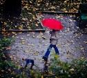Погода в Туле 23 сентября: похолодание, дождь и сильный ветер