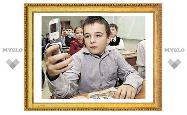 """В Тульской области повязали """"мобильного"""" разбойника"""
