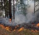 В Тульской области сохраняется чрезвычайная пожароопасность