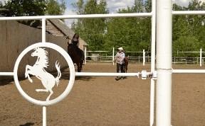 Белая лошадь, база отдыха