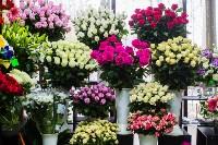 Ассортимент тульских цветочных магазинов. 28.02.2015, Фото: 62