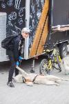 В Туле прошел большой велопарад, Фото: 225