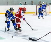 Новомосковская «Виктория» - победитель «Кубка ЕвроХим», Фото: 44