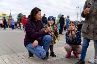 Толпа туляков взяла в кольцо прилетевшего на вертолете Леонида Якубовича, чтобы получить мороженное, Фото: 76