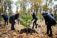 В Центральном парке Тулы появился сосновый бор «Слободы», Фото: 8