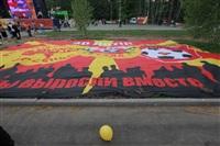 """Файер-шоу от болельщиков """"Арсенала"""". 16 мая 2014 года, Центральный парк, Фото: 2"""