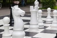 """""""Большие шахматы"""" в Центральном парке, Фото: 8"""