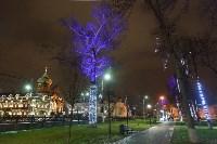 Украшение парка к Новому году, 15.12.2015 , Фото: 43