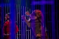 Шоу фонтанов «13 месяцев»: успей увидеть уникальную программу в Тульском цирке, Фото: 235