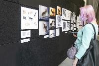 О комиксах, недетских книгах и переходном возрасте: в Туле стартовал фестиваль «Литератула», Фото: 12