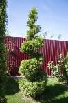 Чудо-сад от ландшафтного дизайнера Юлии Чулковой, Фото: 52