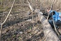 """""""Слобода"""" и Myslo очистили от мусора Платоновский парк!, Фото: 69"""