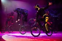 Шоу фонтанов «13 месяцев»: успей увидеть уникальную программу в Тульском цирке, Фото: 149