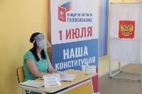 Алексей Дюмин проголосовал по поправкам в Конституцию, Фото: 1
